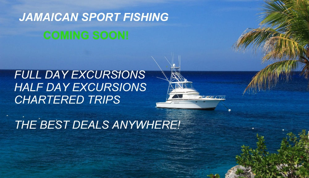 Jamaican sport fishing contact us for chartered trips for Jamaica fishing charters